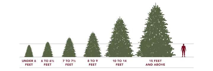 artificial Christmas tree sizes in comparison to human height infographic