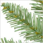Berkshire Mountain Fir  Tree PDP Foliage