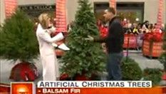 Balsam Hill™ trees, wreaths and garlands have been featured in many popular TV shows such as The Today Show, Ellen, Good Morning America, Celebrity Holiday Homes and more.