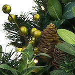 Bay Laurel with Mixed Berries Foliage Detail