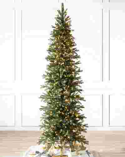 Cathedral Fir Tree-1