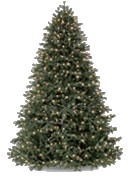full shaped Christmas tree