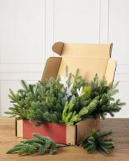 Box of assorted artificial Christmas tree branch clippings