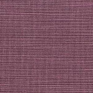 Lilac 02608