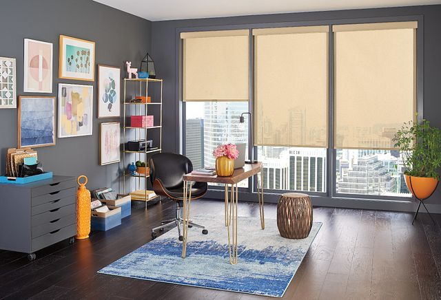 Solar Shades with Cordless Lift: Caballero, Medallion 49703 with Contour Valance