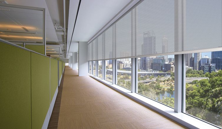 Bight corporate office with Mecho solar MagnaShade in long hallway