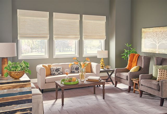 "Standard Roman Natural Shades with Motorized Lift: Resonance, Sugarcane 00116 with Privacy Liner: Snow White 2909, 2"" Edge Banding: Vanilla 1171, and 9"" Standard Valance"