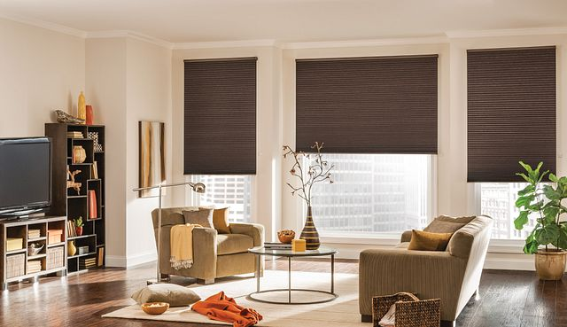 """¾"""" Single Cell Cellular Shades with Motorized Lift: Legacy, Hiking Trail 2715"""