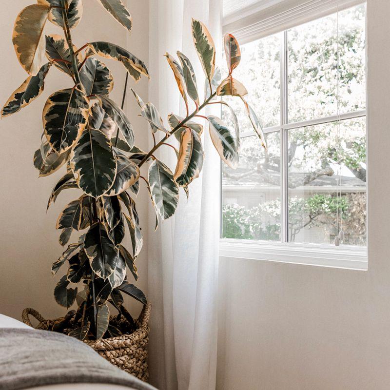 camille-styles-window-treatments-0549.jpg