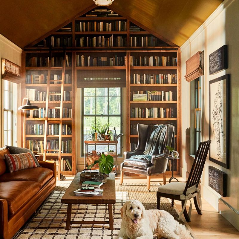 Library in the idea house featuring natural shades