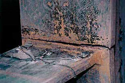 Panel Zone Check, Figure 3 — Fracture of Welded Beam-to-Column Connection in a Laboratory Test