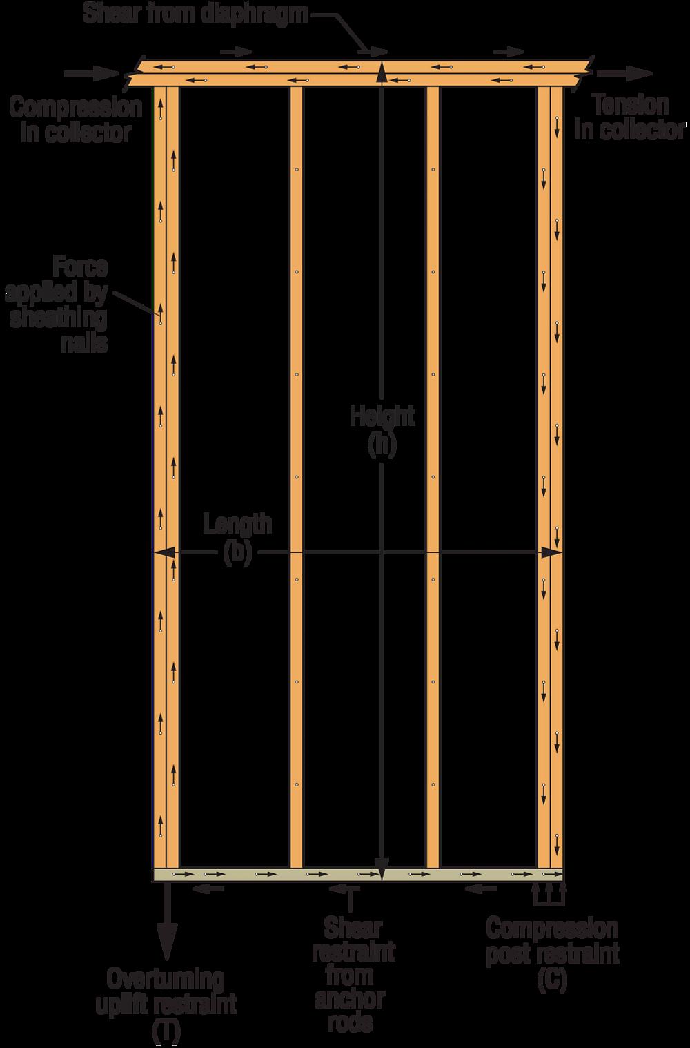 Idealized Force Diagram on Full-Height Shearwall Segment