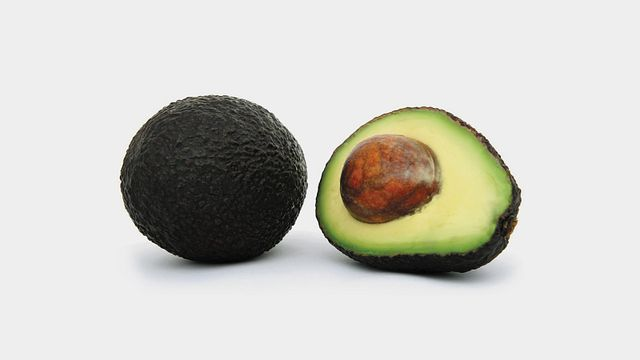 Extra Large Hass Avocados