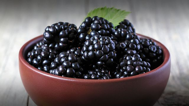 Driscoll's Season's Finest Blackberries