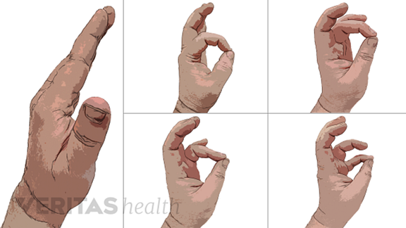Fingertip Touch exercise
