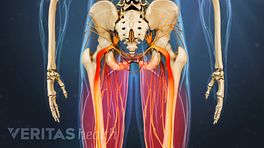 Degenerative Spondylolilsthesis