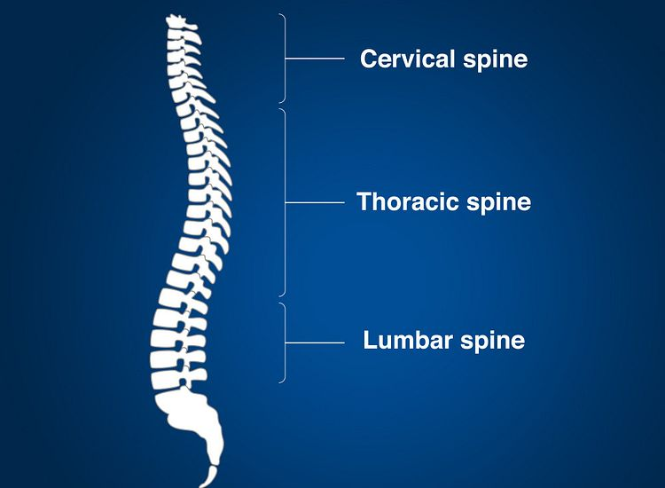 North American Spine treats a comprehensive list of painful spine (back and neck) conditions for fast, lasting relief.