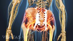 Ankylosing Spondylitis Visual Guide