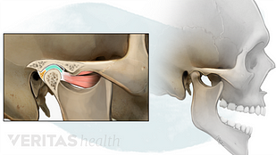 Temporomandibular Joint anatomy illustration