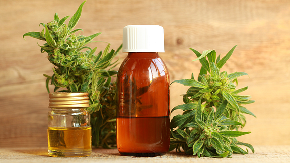Image of two bottles of CBD oil and the the cannabis sativa plant
