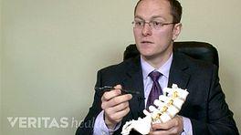 Facet Joint Blocks Video