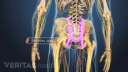Illustration of the anatomy of the lower back and hips with the sacroiliac joint highlighted in purple