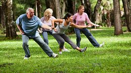 Group performing tai chi in the park.