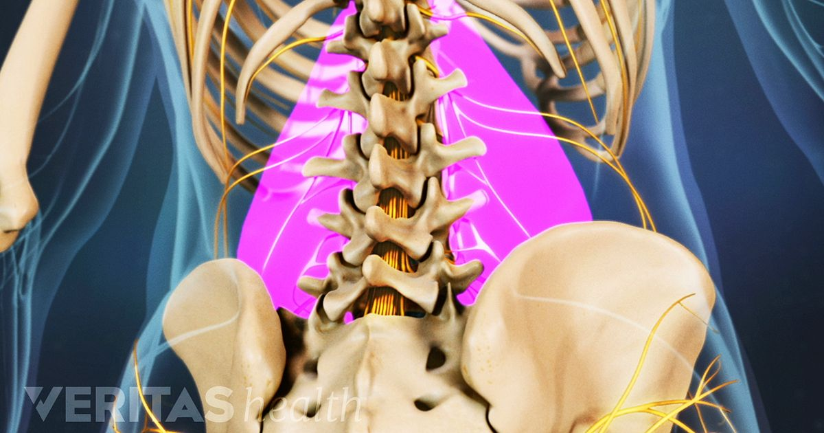 Lower Left Back Pain from Spinal Structures