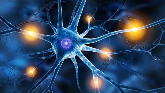 Nerve synapses lighting up
