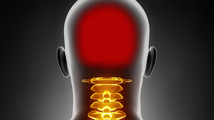 Medical illustration highlighting cervical spine and neck pain
