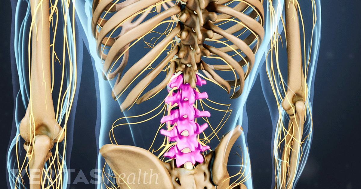 Lumbar Spine Anatomy And Pain