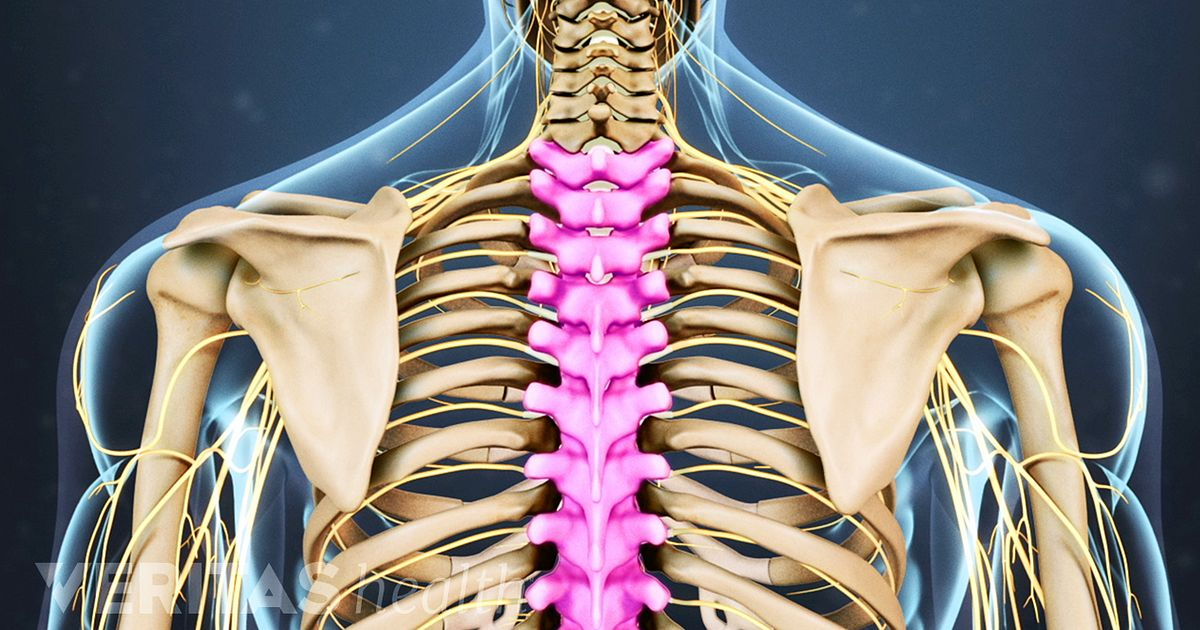 Anatomy of back pain