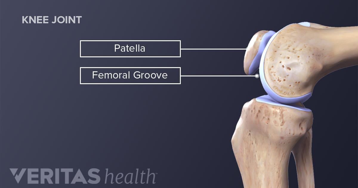 About Acute Patellar Injuries