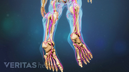 Pain highlighted in the bottom of the foot