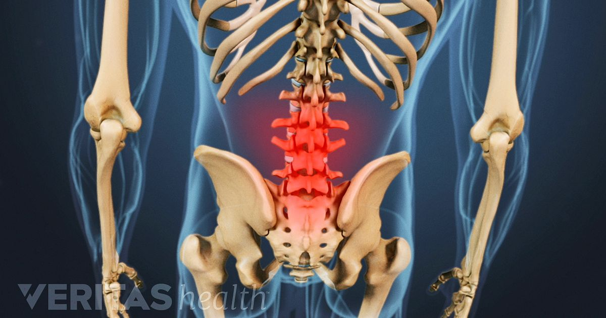 anatomy of the coccyx (tailbone), Skeleton