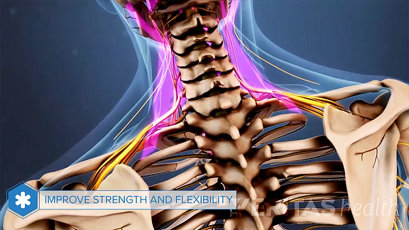 Animated video still highlighting the neck muscles