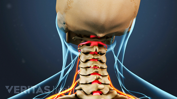 Animated video still showing the cervical spine