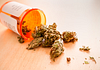 Image of a prescription bottle with medical marijuana tipped over on a table