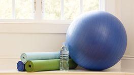 Equipment for an exercise ball program