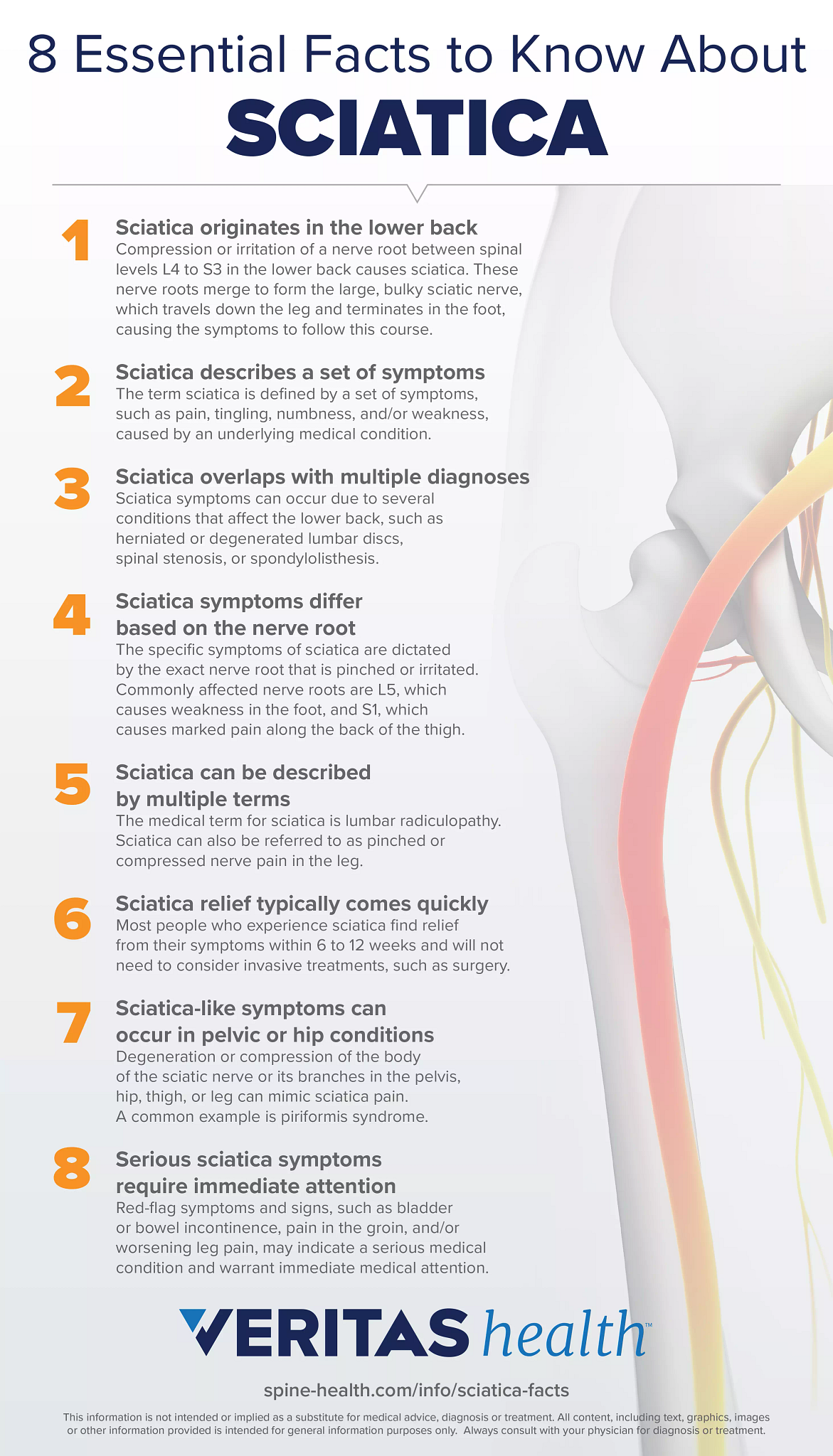 Sciatica Facts