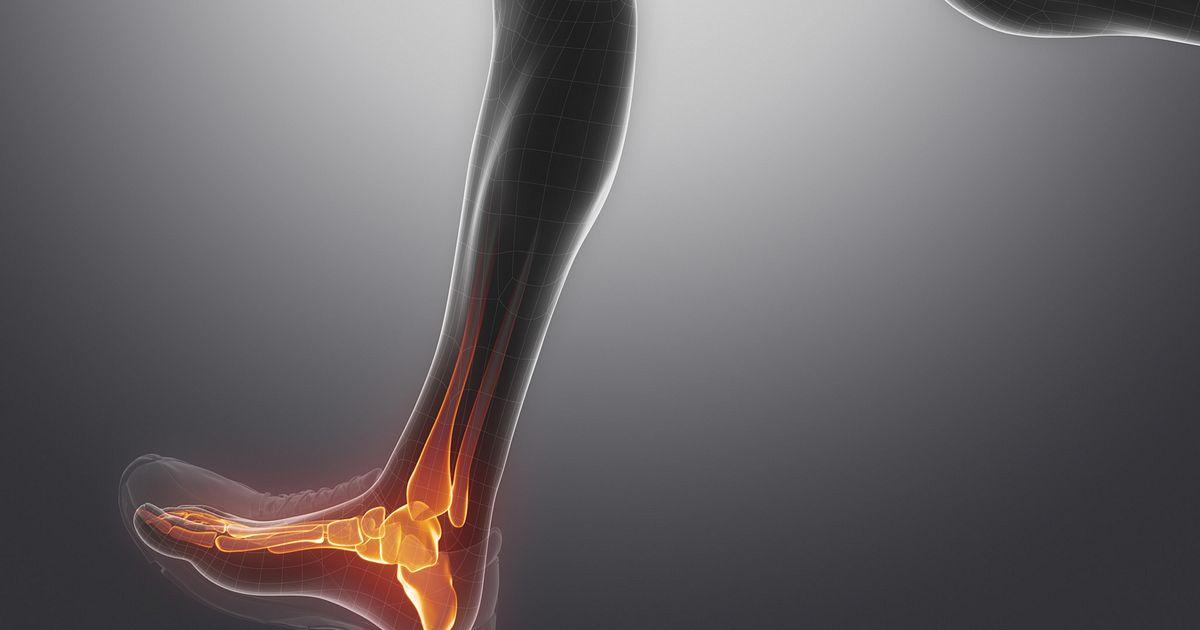 Cervical Spondylosis in addition External Carotid Branches as well Cervicalspondylosis further Rnn Vugbxc G Lvdwumxq Lxfj Yetz Cavitas Glenoidalis as well Adobestock. on neck and shoulder bones