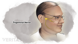 Location and anatomy of the trigeminal nerve