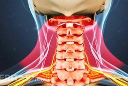 anatomy of cervical spine