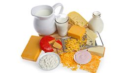 Group of dairy foods including milk and cheese.
