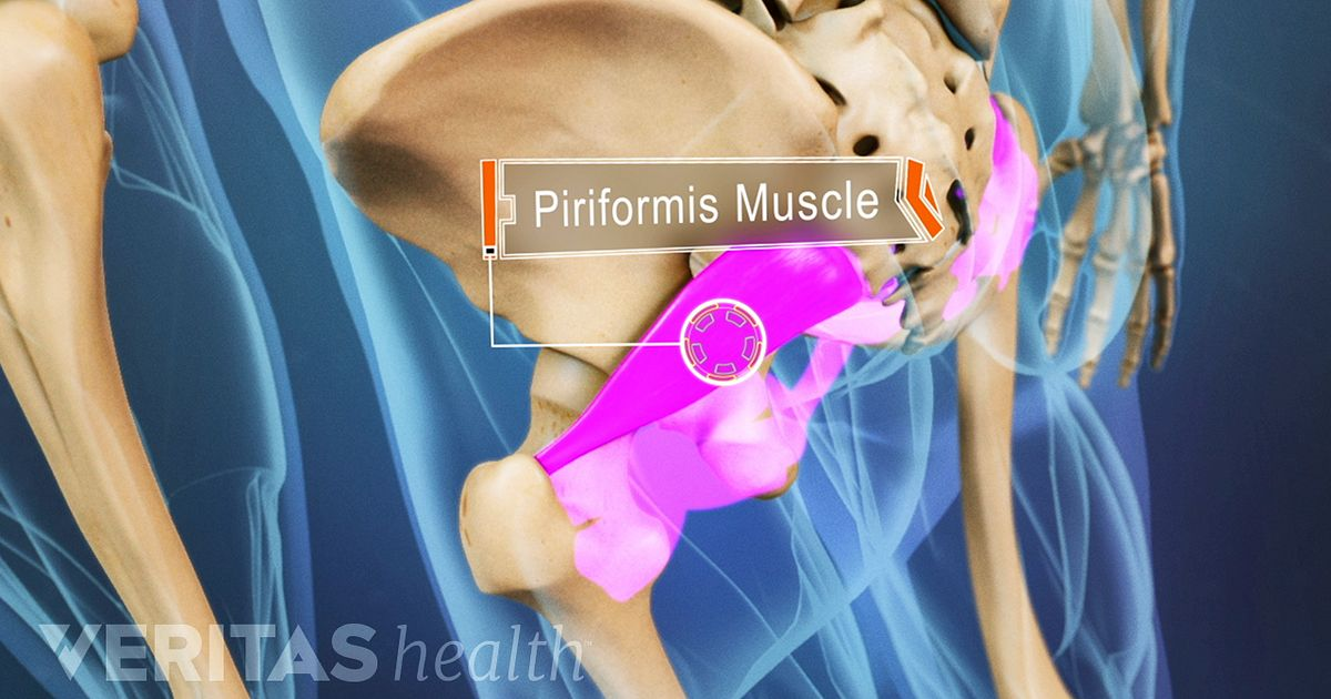 Piriformis Muscle Stretch and Physical Therapy