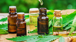 Images of several bottles of CBD oil