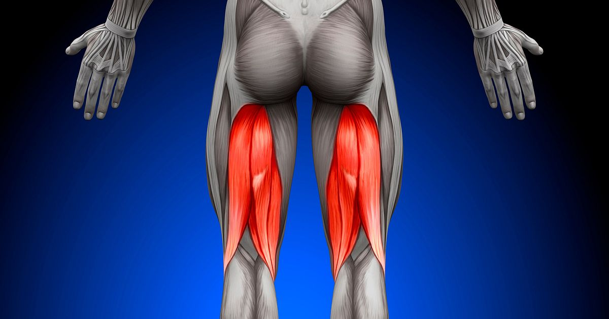 A Pain In The Butt 5 Signs Of Chronic Hamstring Tendinopathy