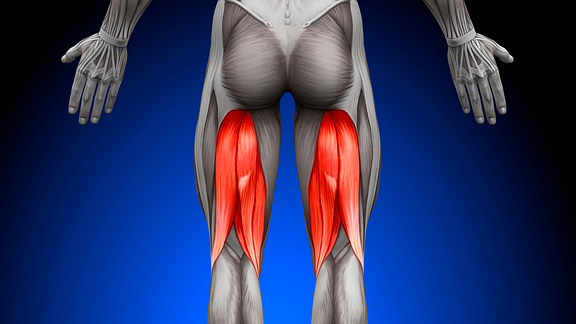 The Risks of Rushing Back from a Hamstring Tear