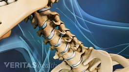 Anterior view of the neck focused on the cervical spine.