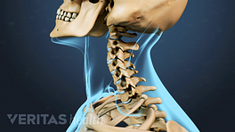 Profile view of cervical spine range of motion
